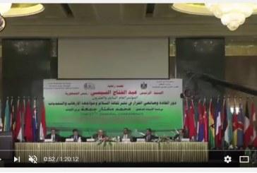 بالفيديو :<center>فعاليات الجلسة العلمية الثانية <br/>لليوم الأول لمؤتمر الأوقاف بالقاهرة<center/>